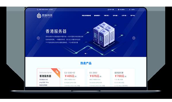 大带宽vps_数脉科技-香港CN2+BGP带宽20M月付433元