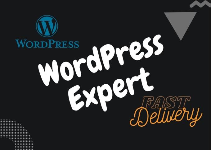 fiverr推广:我将为您设置和维护wordpress网站